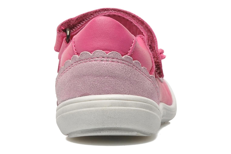 Ballerina's Acebo's Pansy Roze rechts
