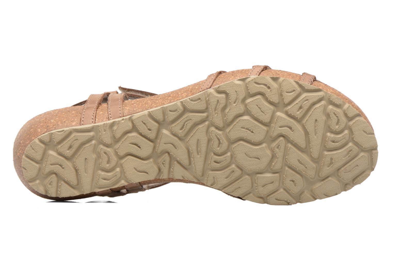 Sandalias Panama Jack Dori Marrón vista de arriba
