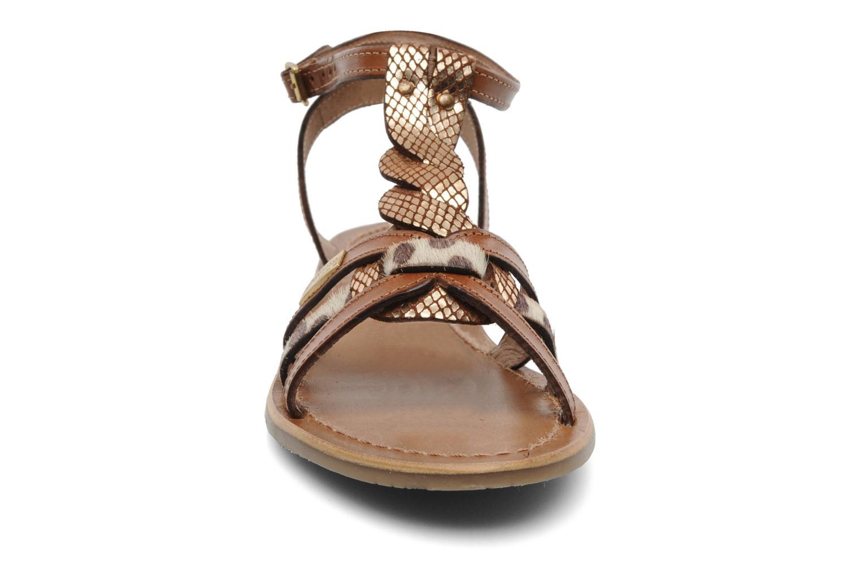 Sandals Les Tropéziennes par M Belarbi Hams Brown model view