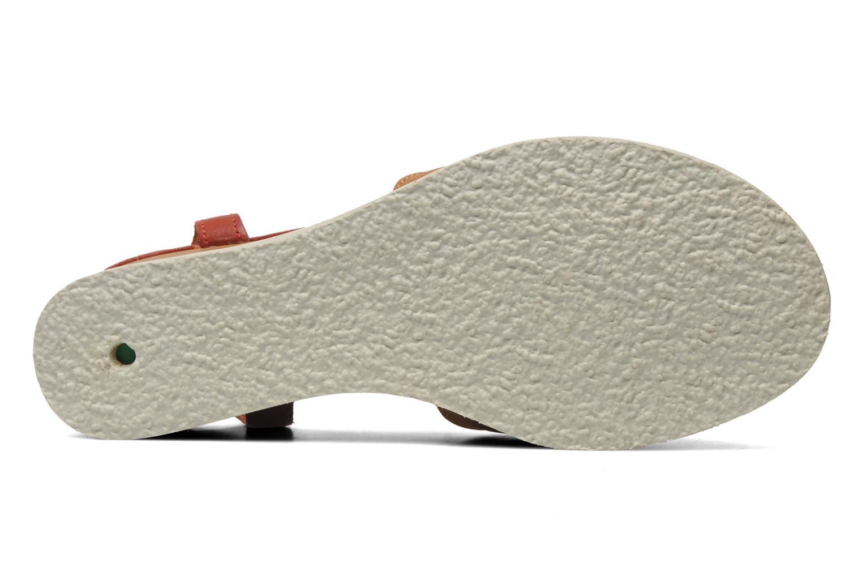 Sandalen Kickers Seshuan rot ansicht von oben