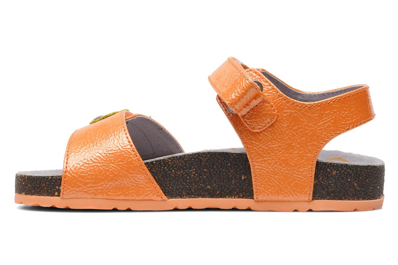 Magiflower Orange