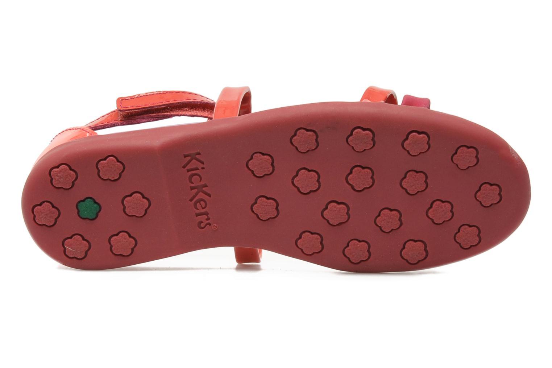 Sandalen Kickers Ariane Roze boven