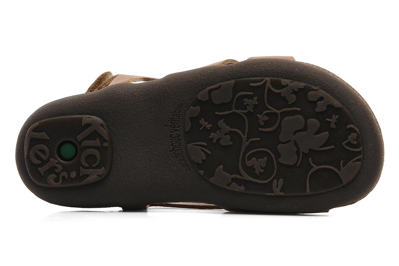 Sandalen Kickers Anatokid braun ansicht von oben