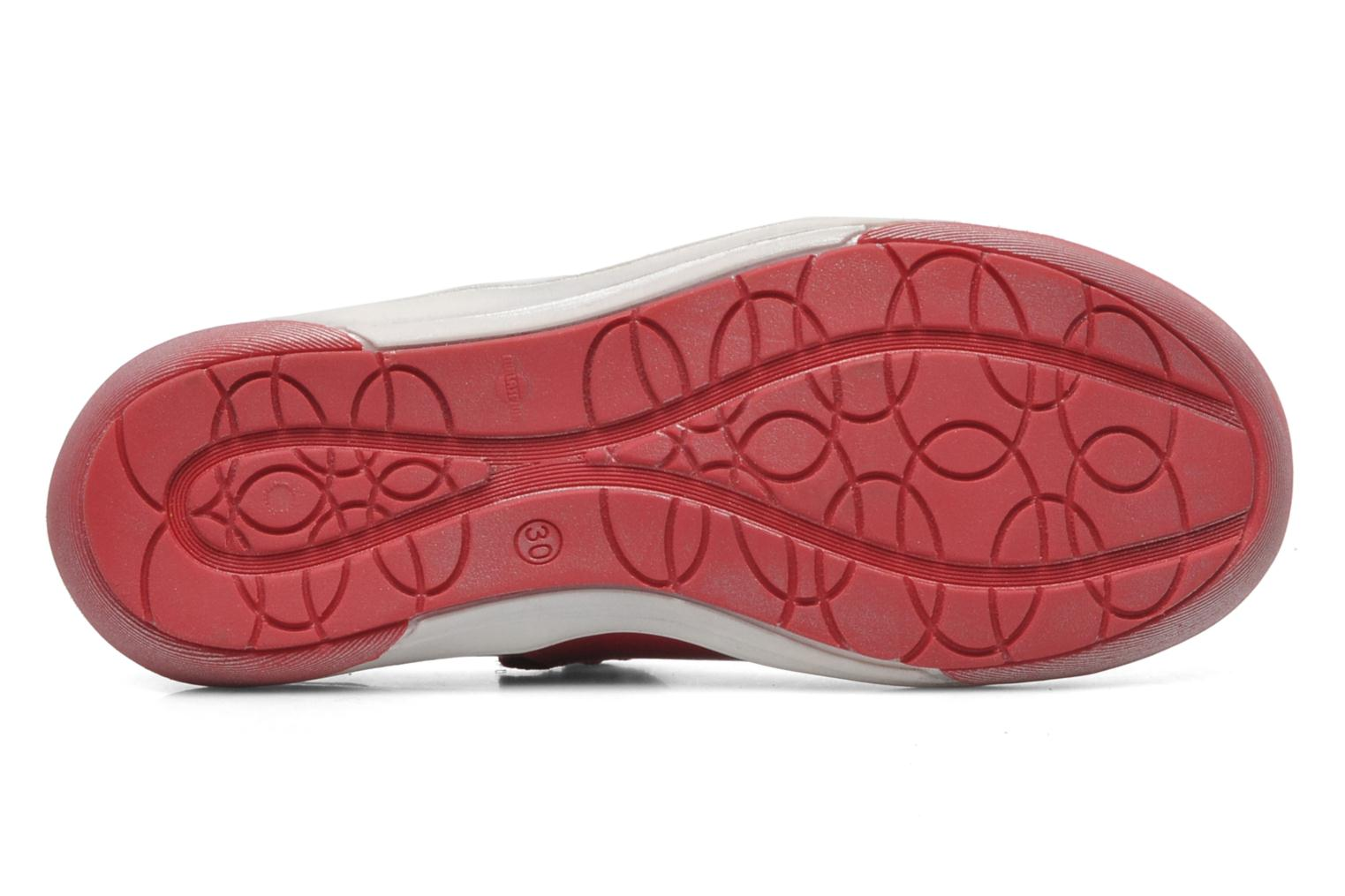 Ballet pumps GBB GIOVANA Red view from above