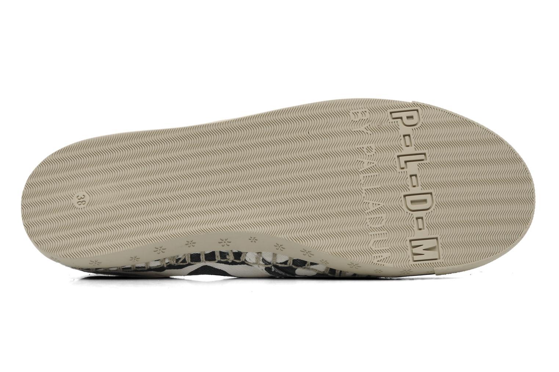 Sneaker P-L-D-M By Palladium Bora Print mehrfarbig ansicht von oben