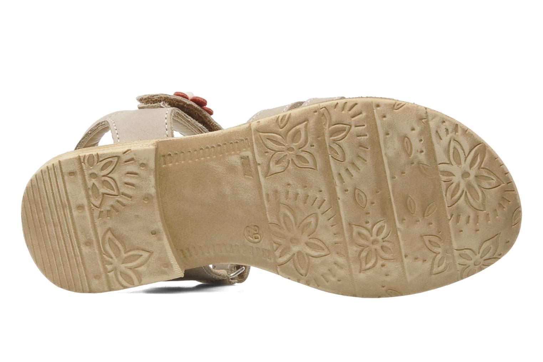 Sandales et nu-pieds Bopy ECOFIT Beige vue haut