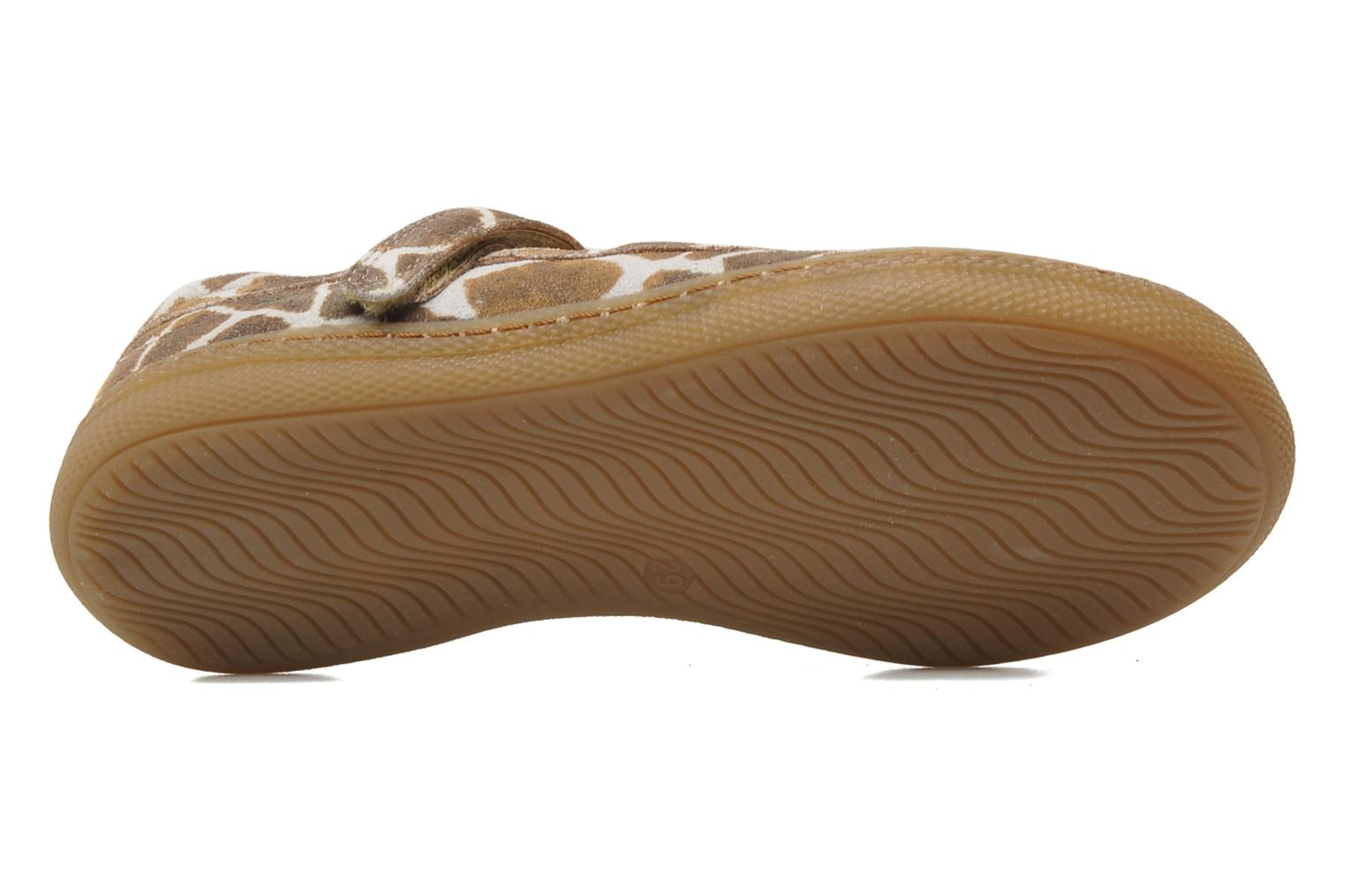 Ballet pumps Pom d Api NEW SCHOOL BABY Brown view from above