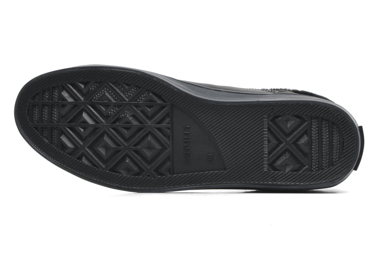 Sneaker Esprit Star Bootie 035 schwarz ansicht von oben