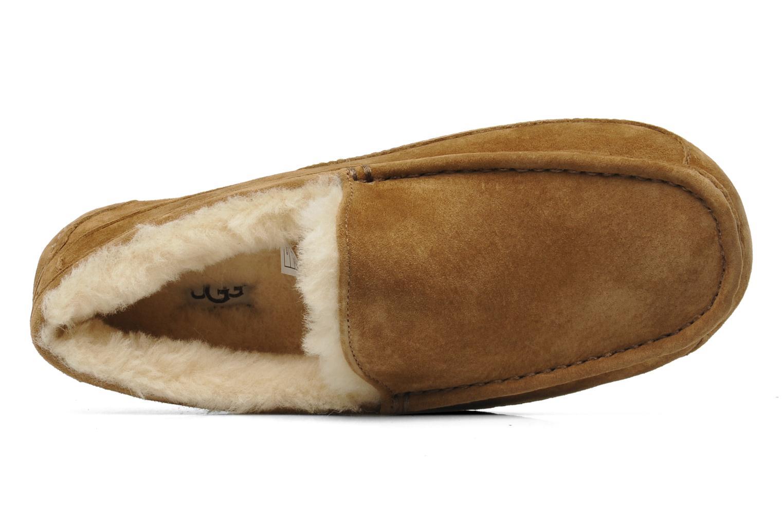 Pantoffels UGG Ascot Beige links