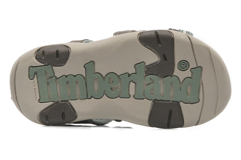 Sandales et nu-pieds Timberland CNTRVL EKLF2STRP Gris vue haut