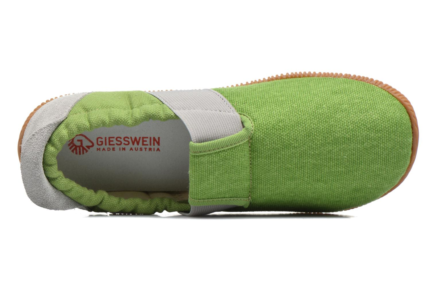 Slippers Giesswein Söll Slim Fit Green view from the left