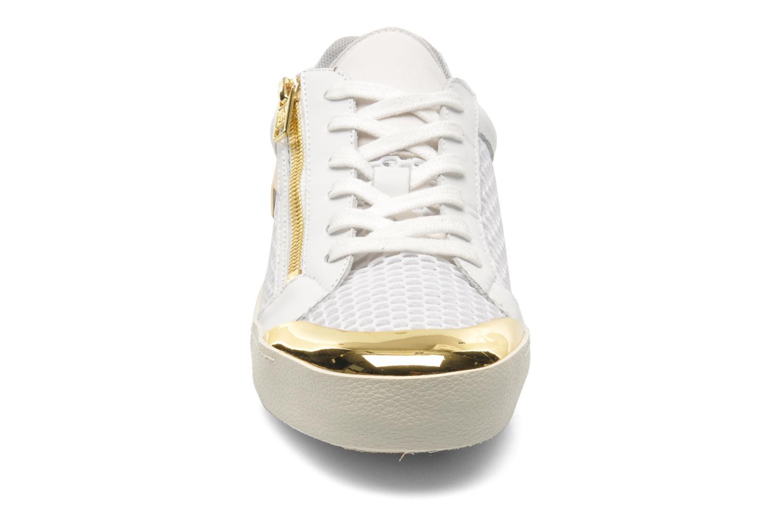 Sneakers Ash Shy Wit model
