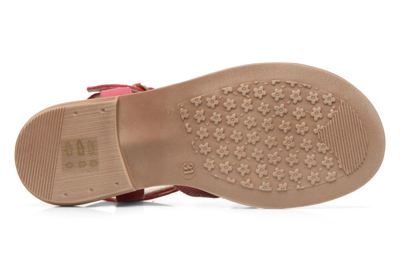 Sandales et nu-pieds Aster TALITA Rose vue haut
