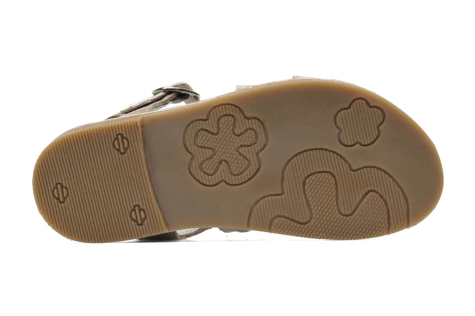 Sandals Bopy HIBOCUS Beige view from above