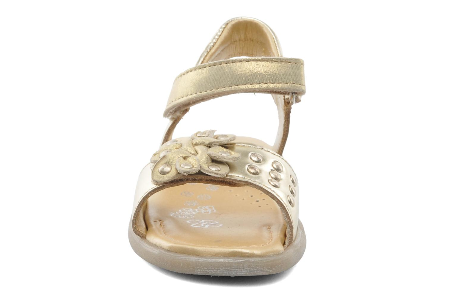 Sandals Babybotte Taline Bronze and Gold model view