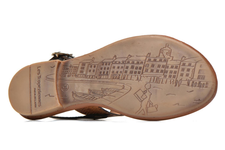 Sandalen Les Tropéziennes par M Belarbi Biniou braun ansicht von oben