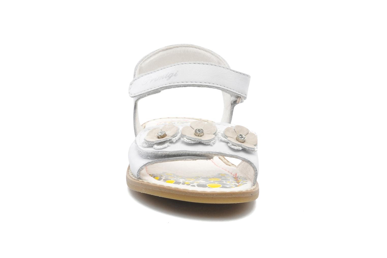 Sandales et nu-pieds Primigi LEILANI Blanc vue portées chaussures