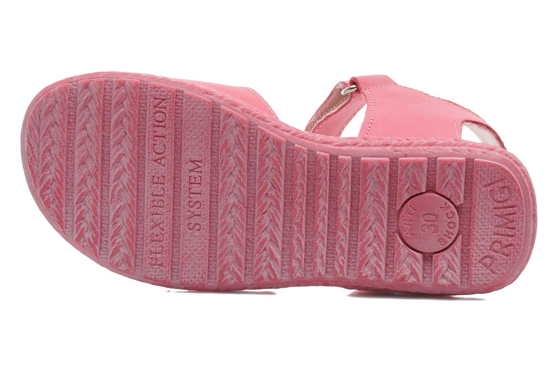 Sandali e scarpe aperte Primigi ARDISIE-E Rosa immagine dall'alto