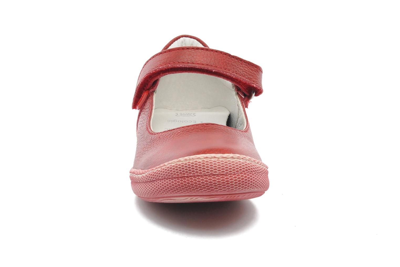 Ballerinas Primigi MORINE 1-E rot schuhe getragen