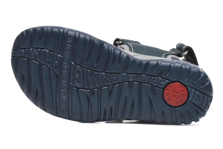 Sandalen Primigi ODINO blau ansicht von oben