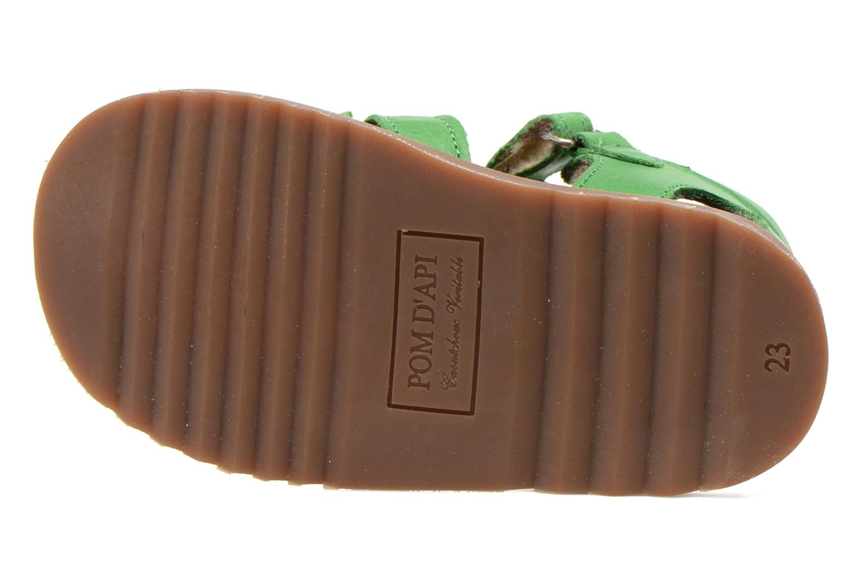 Sandali e scarpe aperte Pom d Api Waff Papy Verde immagine dall'alto