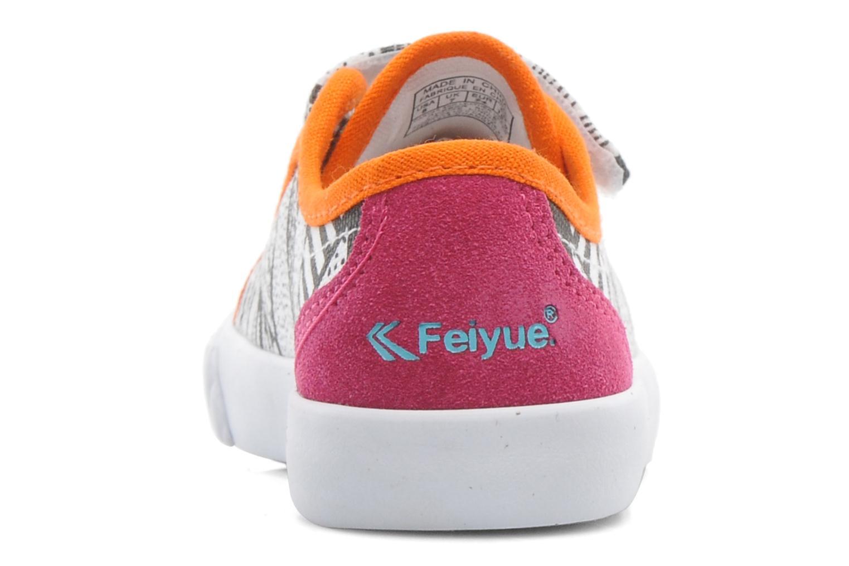 Baskets Feiyue FE LO II CANVAS EZ TRIBAL Multicolore vue droite