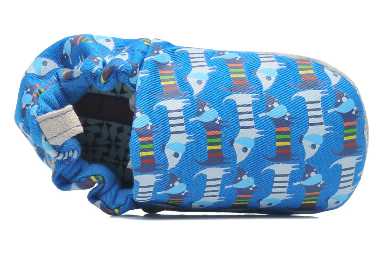 Pantofole Poco Nido RAINBOW SAUSAGE DOG Azzurro immagine sinistra