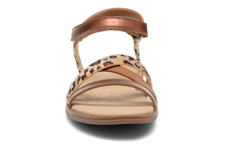 Sandales et nu-pieds Geox J S.Karly G.D  J5235D Marron vue portées chaussures