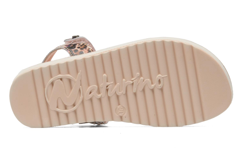 Sandales et nu-pieds Naturino Donna 6003 Multicolore vue haut