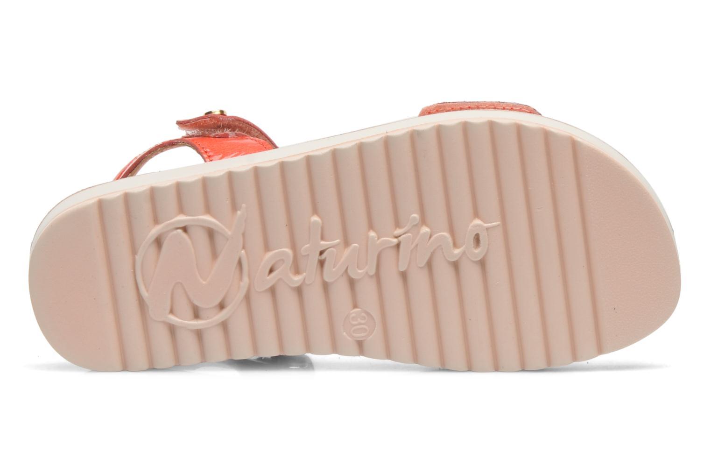 Sandales et nu-pieds Naturino Chiara 6004 Orange vue haut