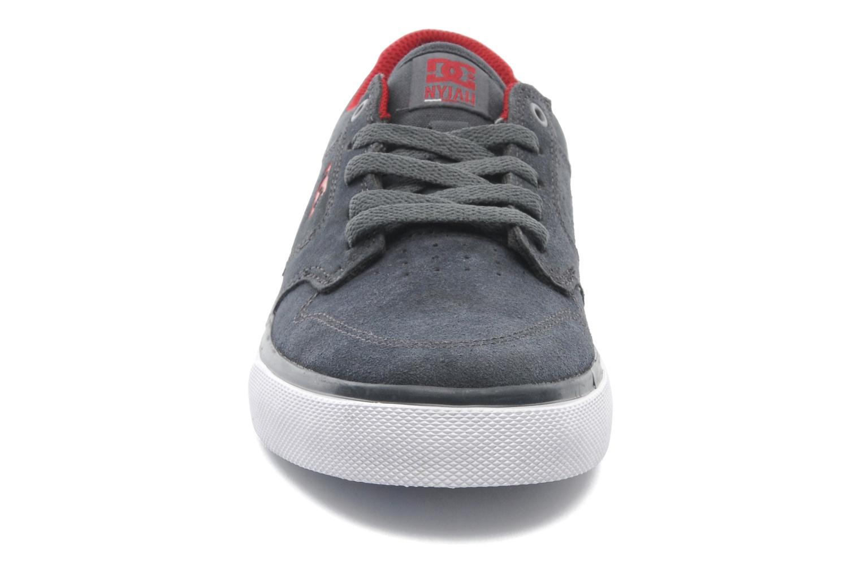 Sneakers DC Shoes NYJAH VULC Kids Grijs model