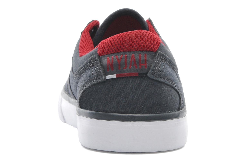 Sneakers DC Shoes NYJAH VULC Kids Grijs rechts