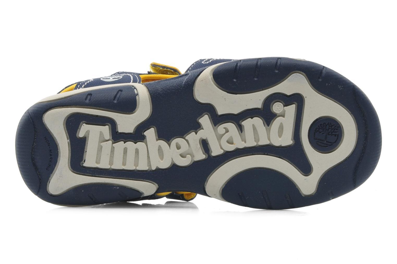 Sandalen Timberland Adventure Seeker 2 Strap Blauw boven