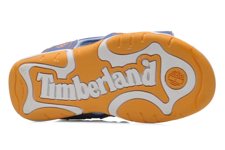 Sandalen Timberland Adventure Seeker 2 Strap blau ansicht von oben