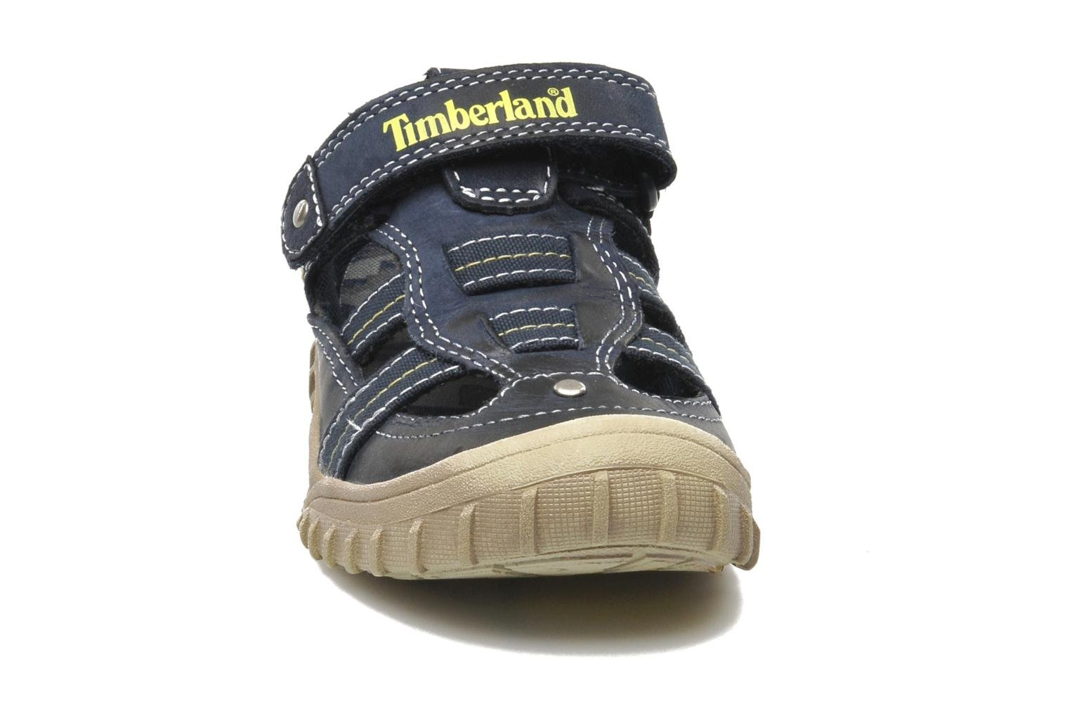 Trainers Timberland Castleton Fisherman Blue model view