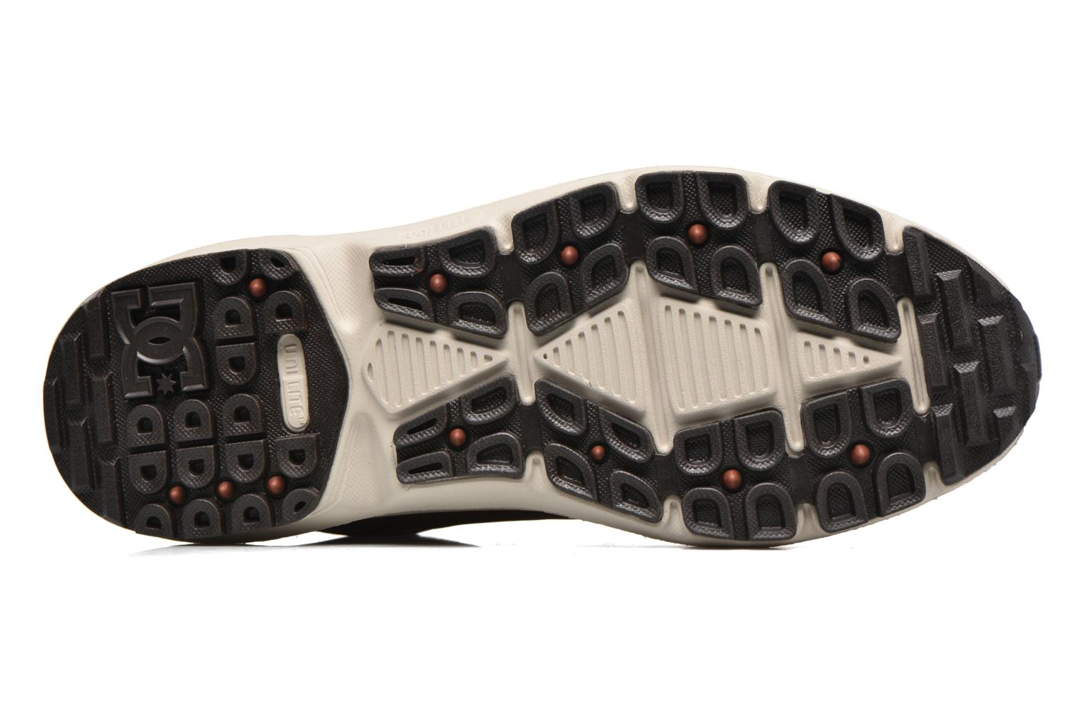 Trainers DC Shoes Torstein Brown view from above
