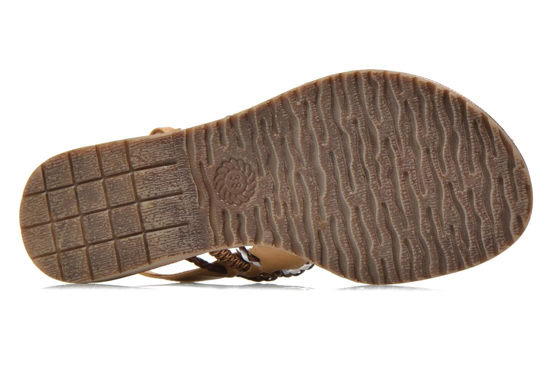 Lefyla Mocca Comb