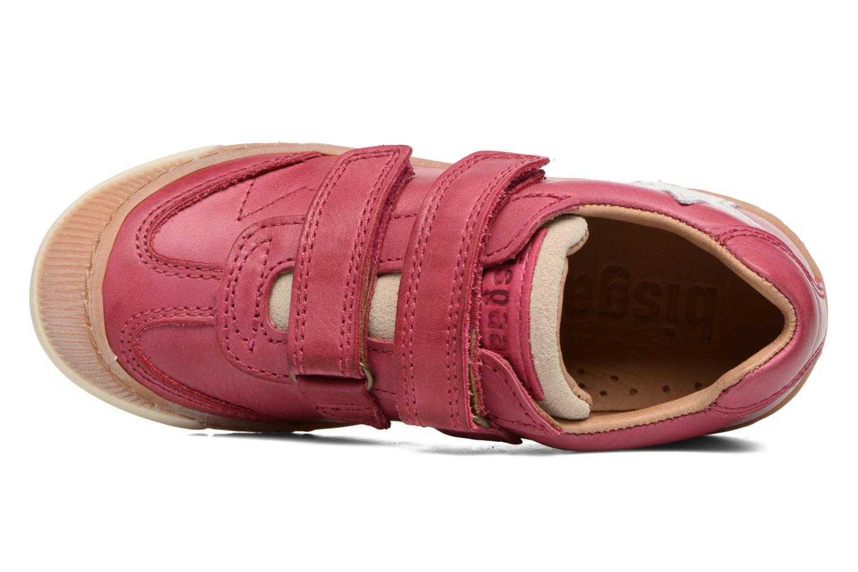 Didrik Pink