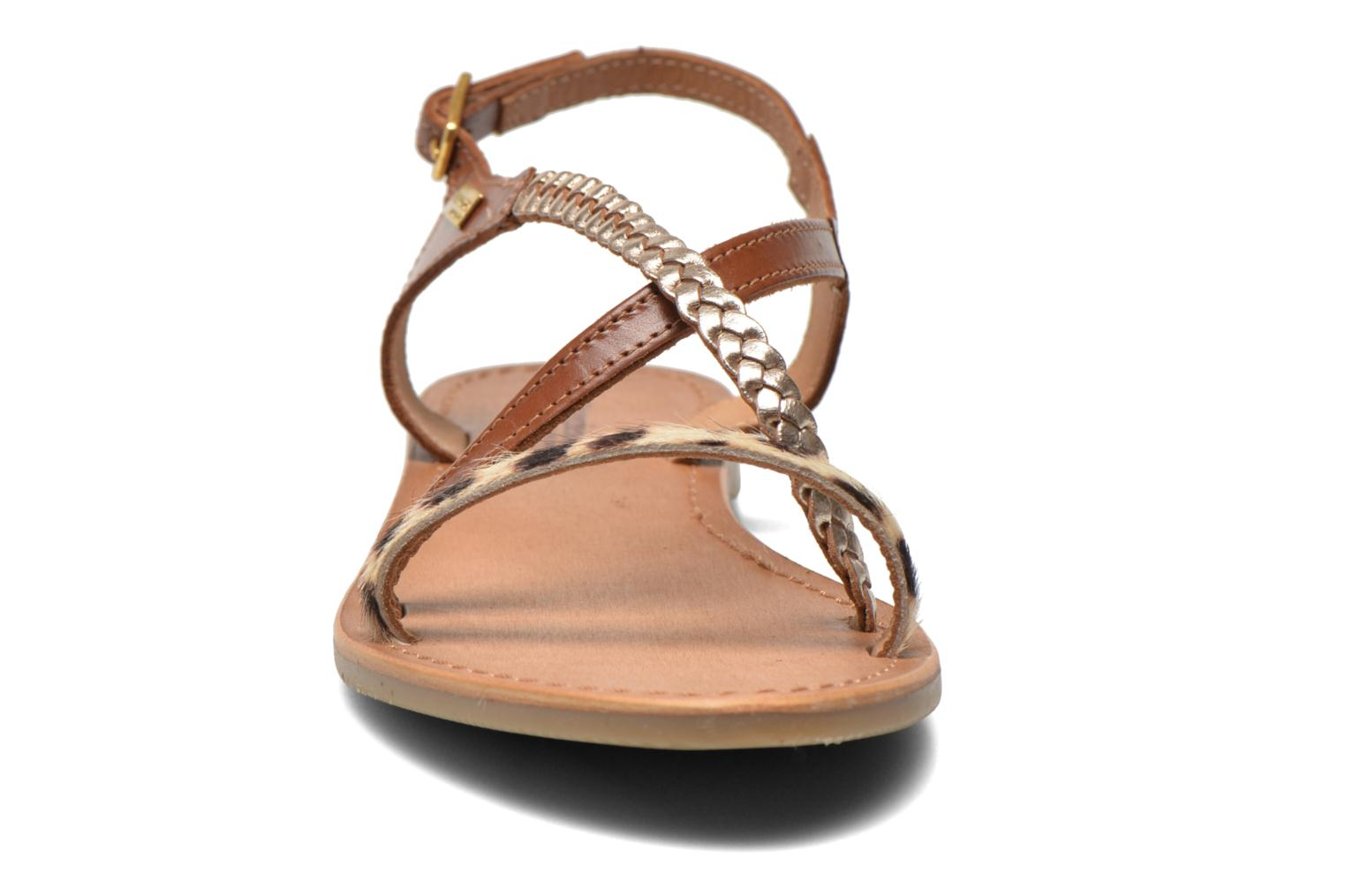 Sandals Les Tropéziennes par M Belarbi Horse Brown model view