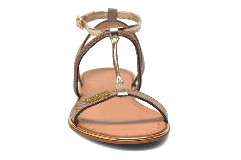 Sandaler Les Tropéziennes par M Belarbi Haquina Bronze och Guld bild av skorna på