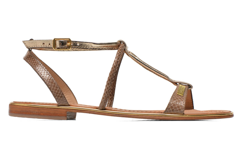 Sandaler Les Tropéziennes par M Belarbi Haquina Bronze och Guld bild från baksidan