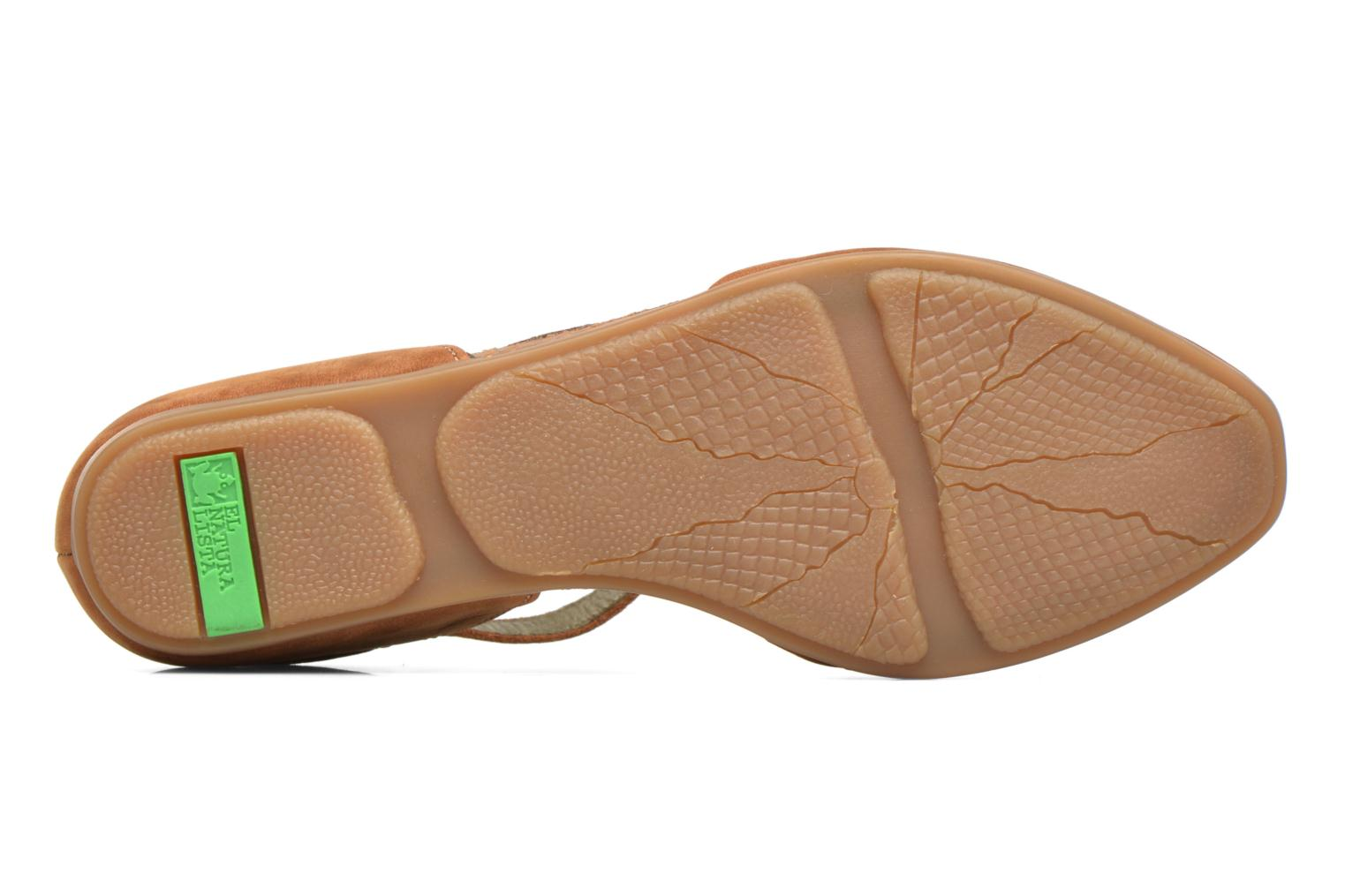 Ballet pumps El Naturalista Stella ND54 Brown view from above
