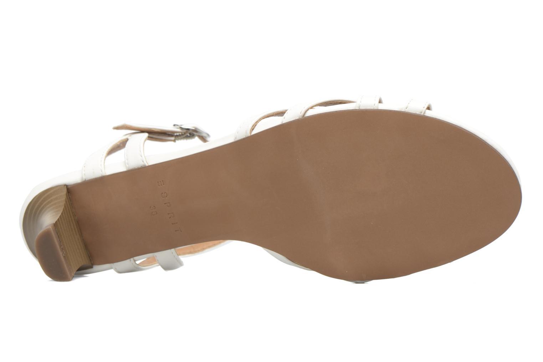 Sandalen Esprit Birkin Sandal weiß ansicht von oben
