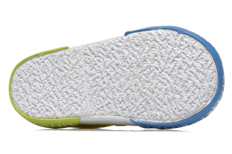 Little Sneakers Multi
