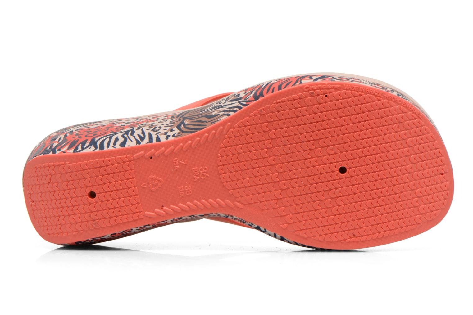 Flip flops Ipanema Lipstick Thong Multicolor view from above