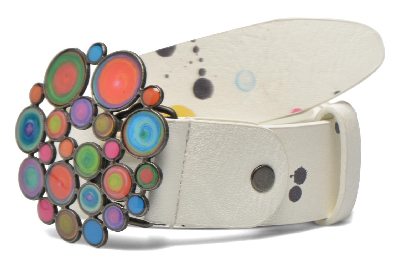 Ceintures Desigual CINT_CHAPON XL SPLATTER Multicolore vue détail/paire