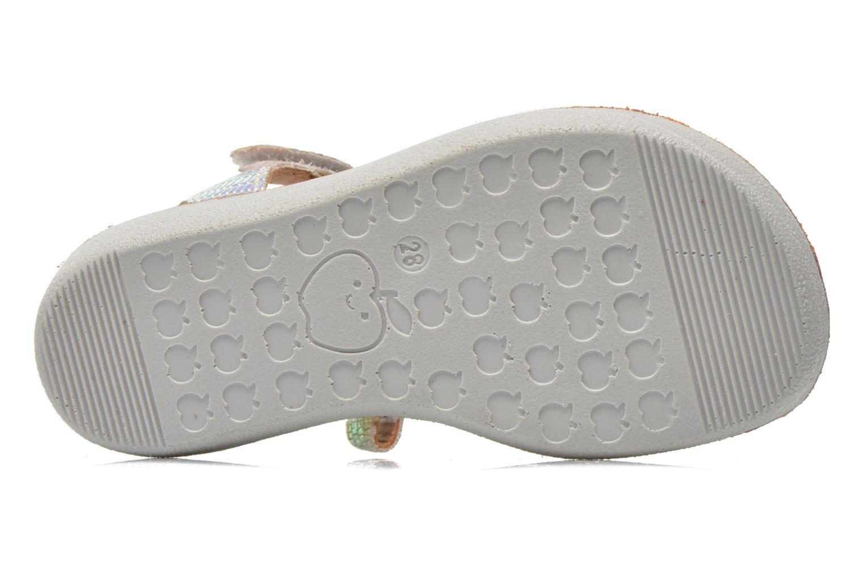 Sandales et nu-pieds Shoo Pom Goa Sandal Multicolore vue haut