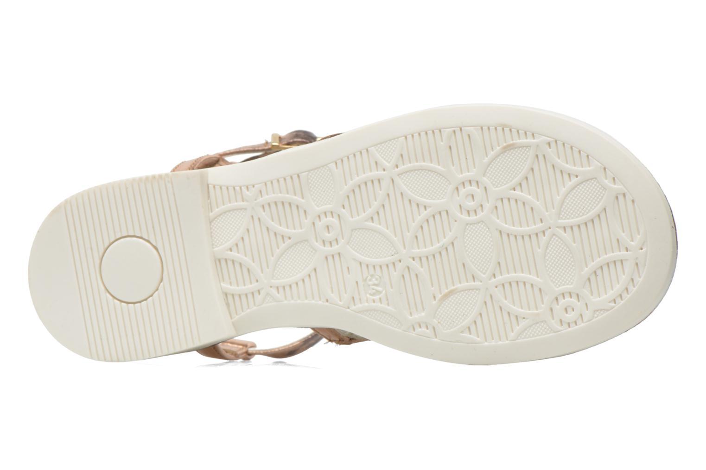 Sandales et nu-pieds Primigi Luz Or et bronze vue haut