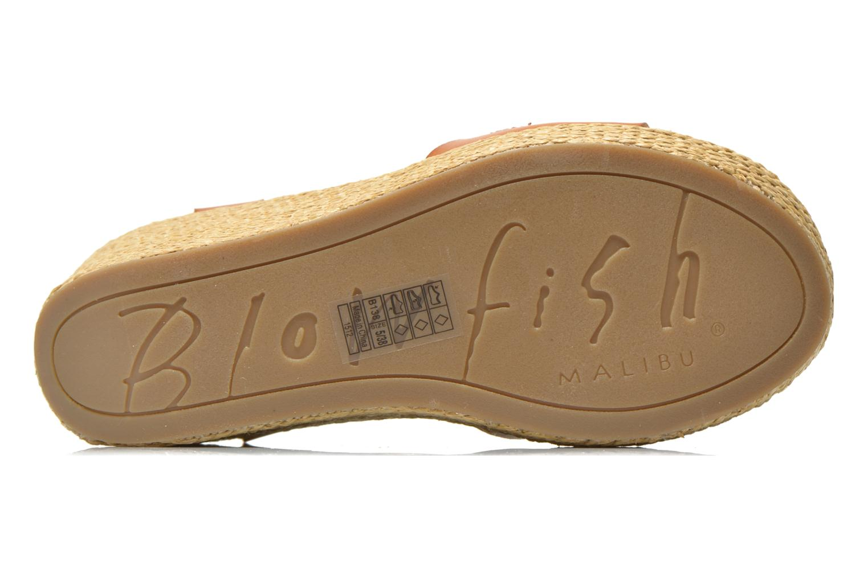 Sandales et nu-pieds Blowfish Drive In Marron vue haut