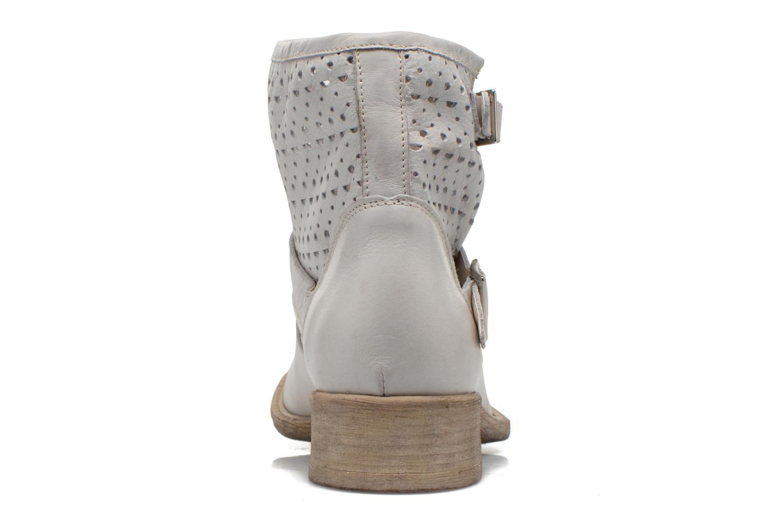 Bottines et boots Sweet Lemon L.5 Ebolo Gris vue droite